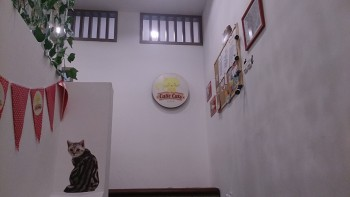 [Review] Cutie Cats Cafe