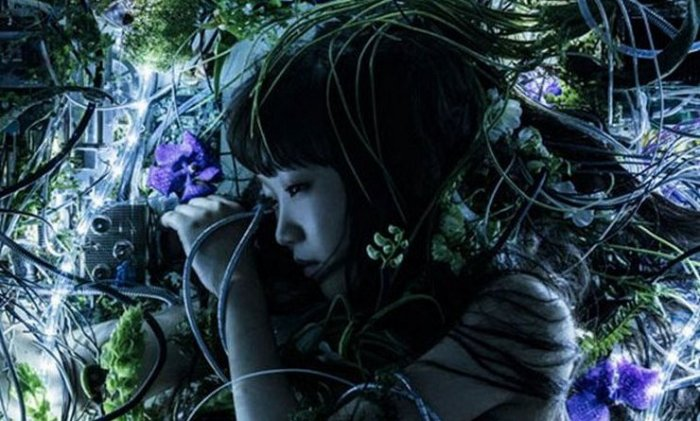 [Pre-AFA 2016 Exclusive Interview] Aimer